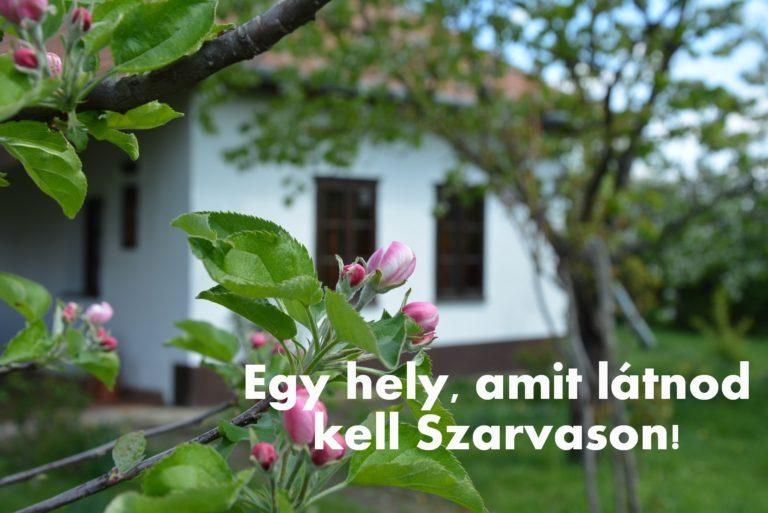 szalmaporta 2 768x513 - Sárarany Szalmaporta - Straw Farm in Szarvas